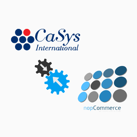 Picture of Payment CaSys for nopCommerce